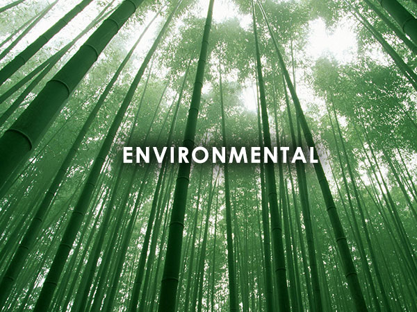 Environmental Consulting  Projects