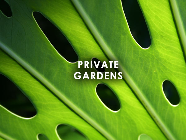 Private gardens Projects